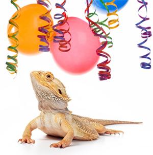 Reptile Invitations is luxury invitation sample