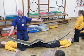 reptile-roadshow-school-events